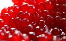 Koktejlové a kandované třešně, kandované ovoce, alginát, CHELLIES