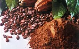 Kakao a kakaové máslo